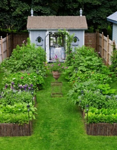 If you want extra help with your garden planning, there is some great vegetable garden design software out there that you could use to your advantage.With this software you will be able to more easily choose the location for your garden and where to plant the different vegetables and so on.Remember that when it comes to the hobby of vegetable gardening, the more that you know the better off you are going to be, without a doubt.