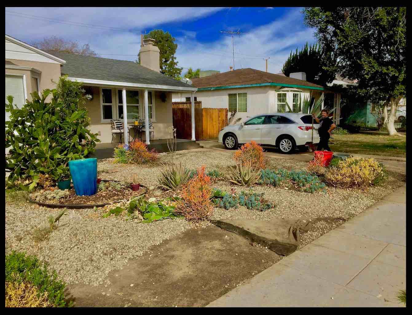 Guerilla Gardeners – Community – Growth – Sustainabilty